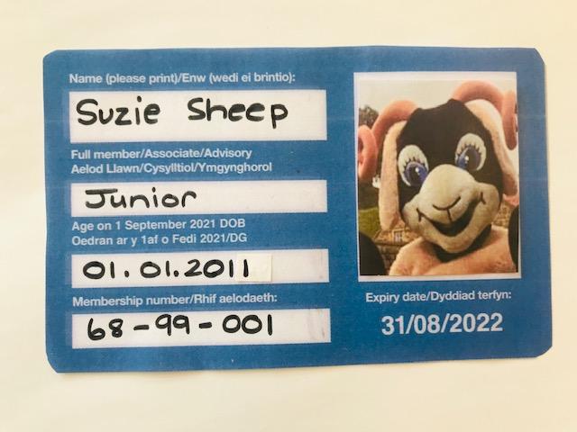 Suzie Sheep membership card exp 31.08.2022